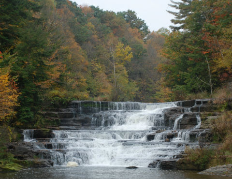 Picture of Wiscoy Creek Falls